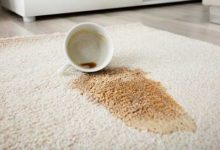 7 Mistakes with Carpet Cleaning and How to Avoid Them