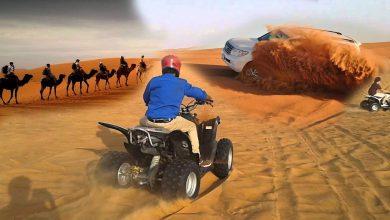 Book desert safari from Sharjah